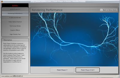 図2 FreeBSDで動作するWindows Flash 9+Windows Firefox その2