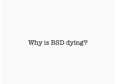 図1 BSD is Dying発表ビデオから抜粋