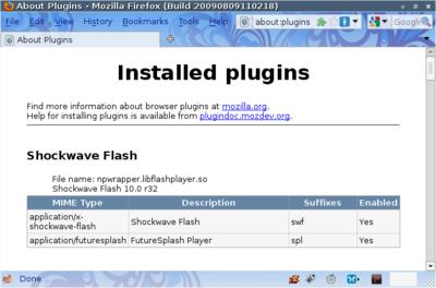 図1 Flash10プラグインインストールの確認