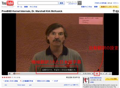 図4 日本語へ自動翻訳した場合の例