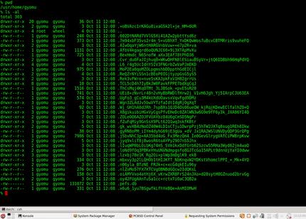 図9 PEFSでホームディレクトリ以下を暗号化