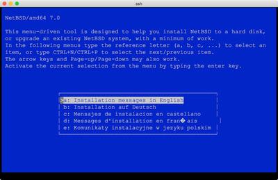 図5 NetBSD on bhyveインストールのよう