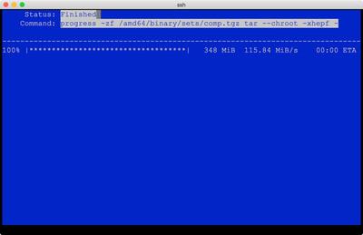 図6 NetBSD on bhyveインストールのよう