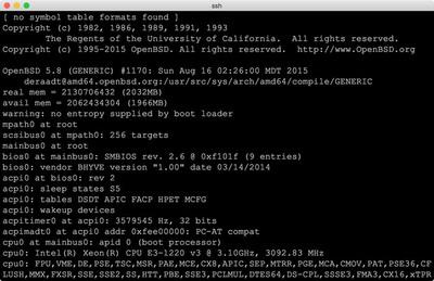 図3 OpenBSD 5.8実行例