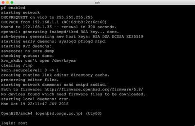 図4 OpenBSD 5.8実行例