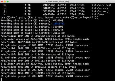 図 OpenBSDインストール例