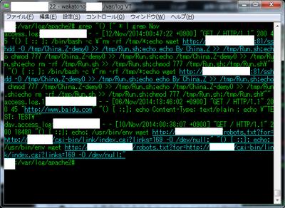 図1 11月時点でも確認されたログの例