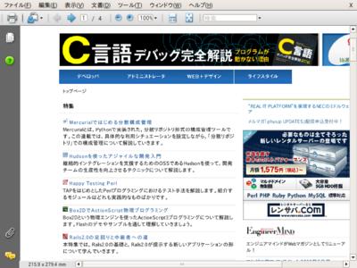 図4 Adobe ReaderでPDFを表示した例