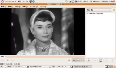 図6 NetWalkerで再生しているところ(注:写真はハメコミ合成です)