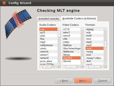 図4 「aac」「libx264」「mp4」がそれぞれ利用可能となっている