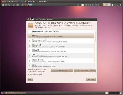 図3 Ubuntu 11.04の「ターミナルサーバクライアント」でUbuntu 10.04に接続しているところ