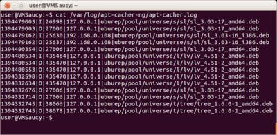 図1 ログファイルapt-cacher.logの確認
