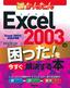今すぐ使えるかんたん Excel 2003の困った!を今すぐ解決する本
