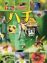 [表紙]ハチ