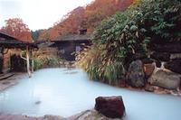 露天風呂(鶴の湯温泉)