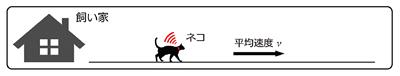 図4 ネコの移動