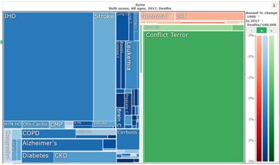 図6 IHMEで描画されたシリアの死亡原因を表したツリーマップ