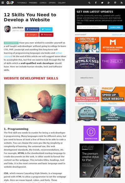 図1 Webサイトを開発するのに必要な12のスキル