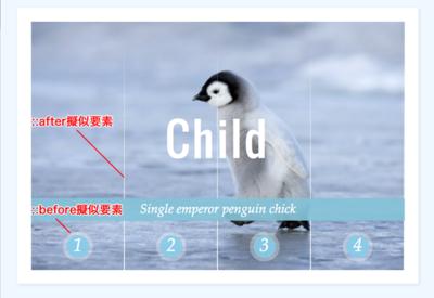図2 擬似要素::beforeと::afterで加えたボタンの丸い枠と画像の4等分線