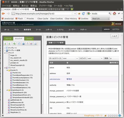 図1 「システム」→「語彙トピックの管理」より日本語訳を表示