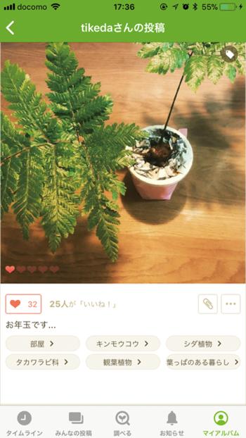 図4 GreenSnapのiPhoneアプリ