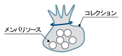 AtomPub のリソース
