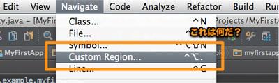 図10 謎の「Navigate → Custom Region...」