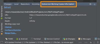 図3 「Changesツールウィンドウ / Subversion Working Copies Informationタブ」