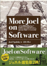 図1 More Joel on Software