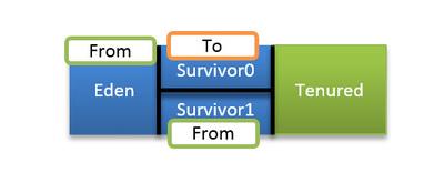 図6 2回目のマイナーGCでの各領域の役割