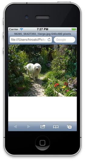 Safariで画像が表示される