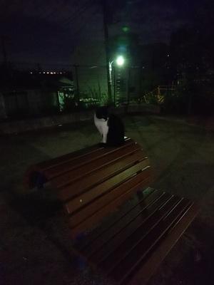 ベンチに座る黒仮面さん2
