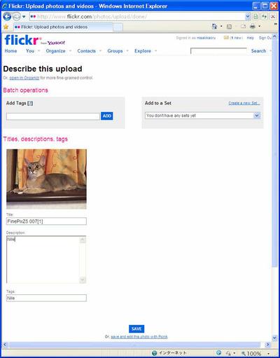 FlickrのTagとDescription