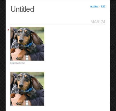 図2 自分がPostした写真(下)と,他の人からReBlogした写真(上)。違いは下のほうにあるリンクだけ