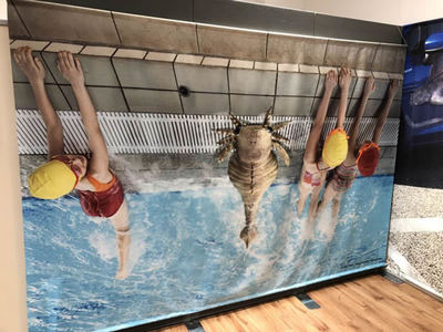 プール際で子供たちが一緒に泳いでいるのはスリモニア。古生代へタイムスリップした感じで並んで撮ってシェアしてみては? ハッシュタグは「#リアルサイズ古生物図鑑」で