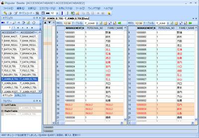 「Popular Beetle」管理画面,異なるDB間のスキーマおよびデータを直感的に比較できる。