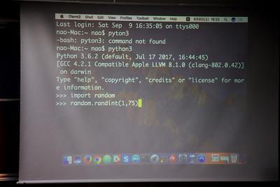 Pythonのrandom関数で抽選