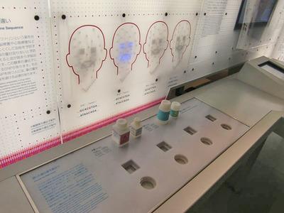 図4 遺伝子情報と薬の処方について体験できる展示