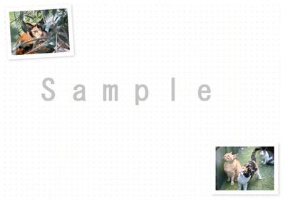 サンプル画像6