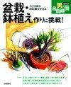 [表紙]盆栽・鉢植え作りに挑戦!小さな鉢に深山幽谷を見る