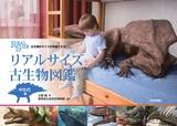 [表紙]古生物のサイズが実感できる! リアルサイズ古生物図鑑 中生代編
