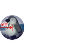 図2 トゥイーンするオブジェクトがCanvasの外に切れないよう左端座標を内側に定める