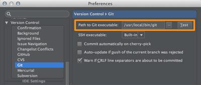 図1 「Preferences / Version Control / Git」設定画面
