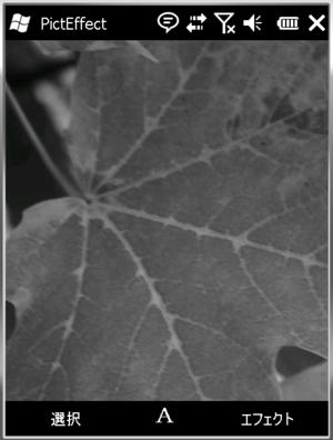 図2 サンプル画像をグレイスケール化