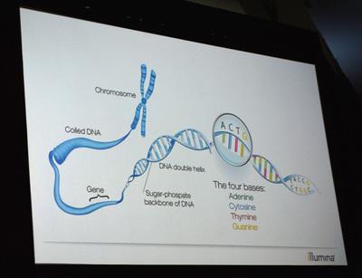 染色体(Chromosome)はヒストンと呼ばれるタンパク質のまわりにDNAが巻き付いて構成されている。DNAは4つの塩基(ACGT)が二重螺旋構造で結合しており,DNAの一部に遺伝子がデータとして書き込まれる。ひとつの細胞に含まれるDNAの長さは約2m,うち遺伝子が書き込まれている部分は5%ほどといわれている