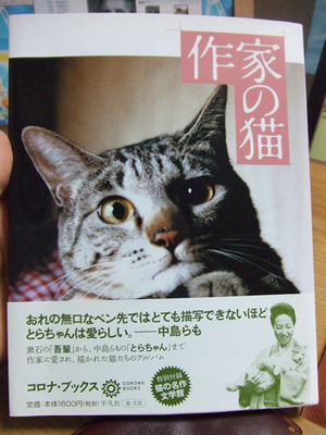 スキャンしようとした『作家の猫』